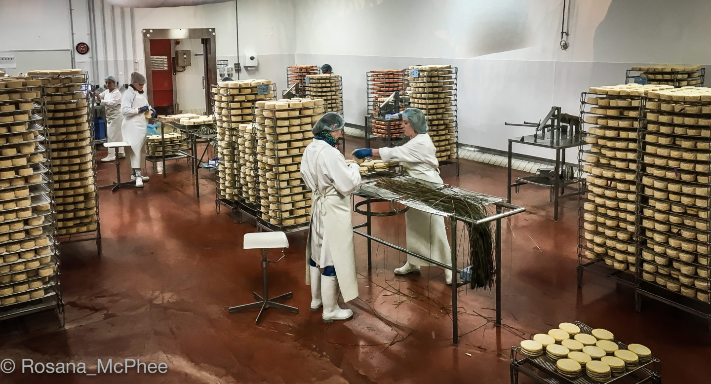 Fromagerie GRAINDORGE, Norman cheeses