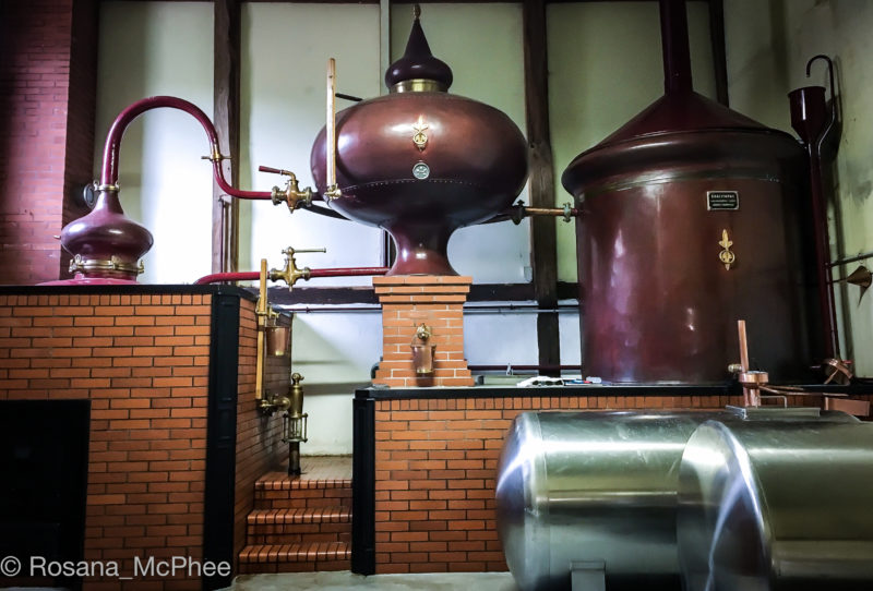 La Maison Périgault , cider, apple cider, normandy cidre, cidre
