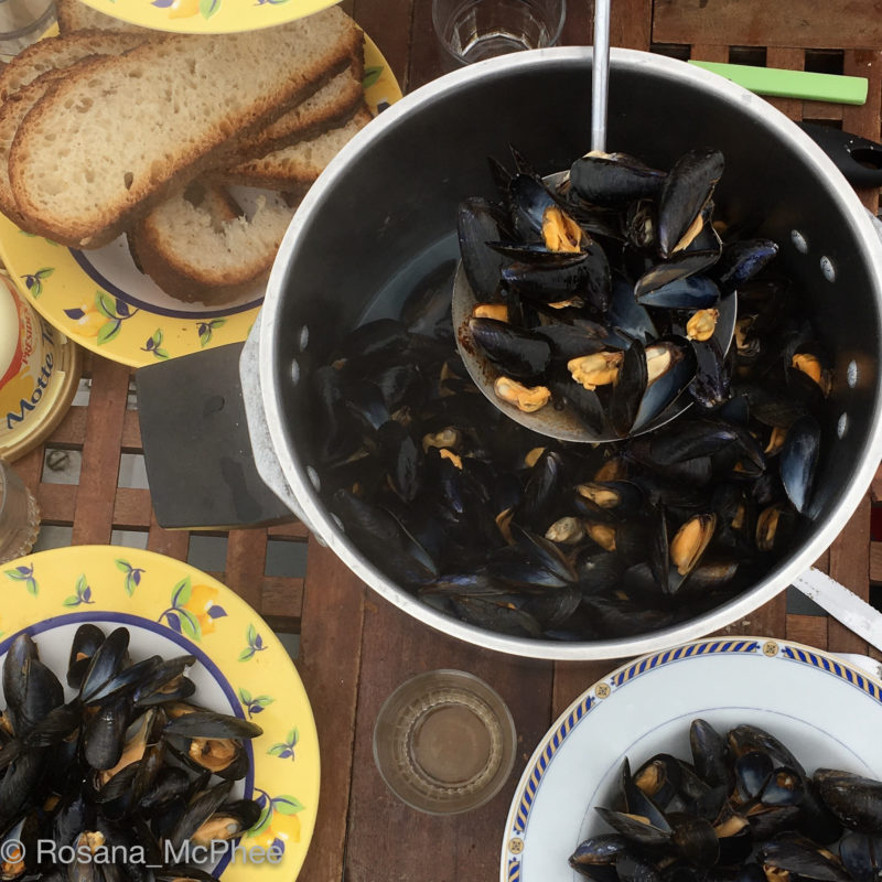 Mussels, Island hopping, Chausey archipelago, Voidie Voile - Oysters